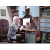 Шпиц Померанский карликовый рыжый